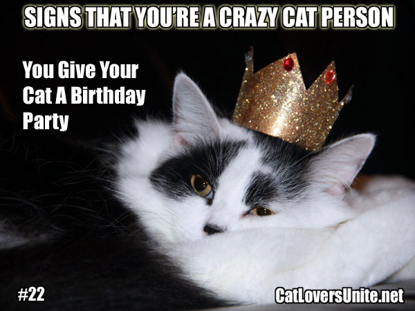 Crazy Cat Person Meme #22 - For more visit: CatLoversUnite.net