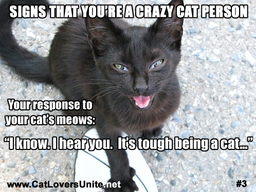 Crazy Cat Person - Sign #3