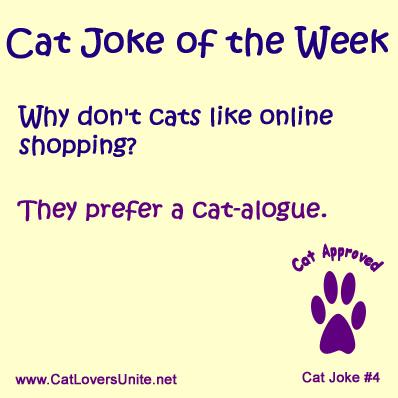 Cat Joke #4