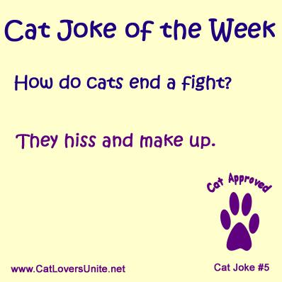 Cat Joke #5