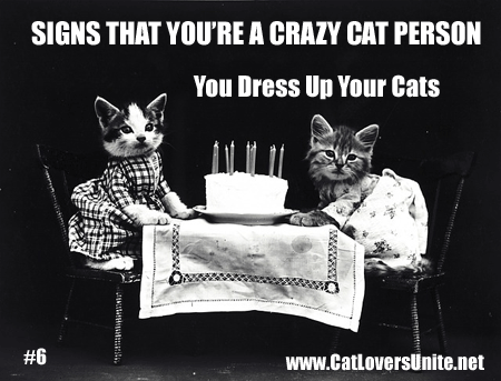 Signs You're a Crazy Cat Person #6