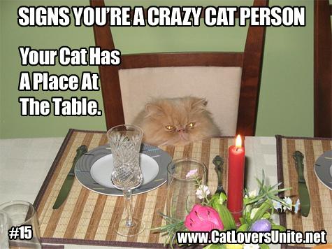Crazy Cat Person Meme #15. More at catloversunite.net