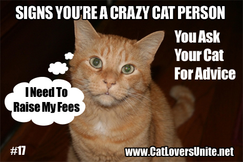 You may be a Crazy Cat Person #17 - more at https://catloversunite.net