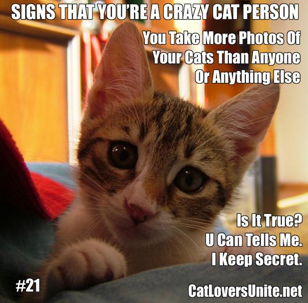Crazy Cat Person meme #21. For more: CatLoversUnite.net