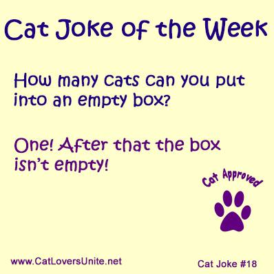 Cat Joke #18